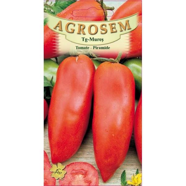 Seminte de rosii lungi semitimpurii nedeterminate piramide, 0,5 grame, Agrosem Impex