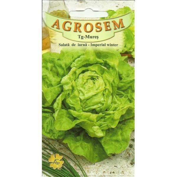 Seminte de salata de iarna Imperial Winter, 15 grame, Agrosem