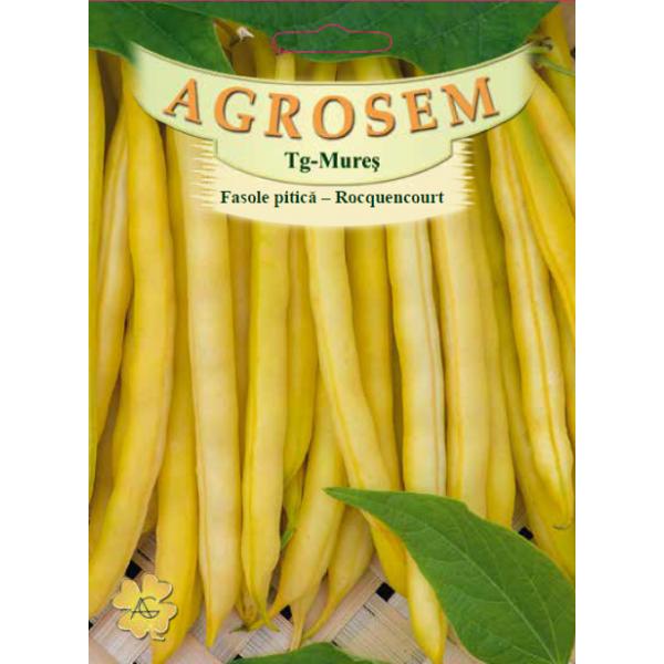 Seminte de fasole pitica galbena fideluta Rocquencourt, 50 grame