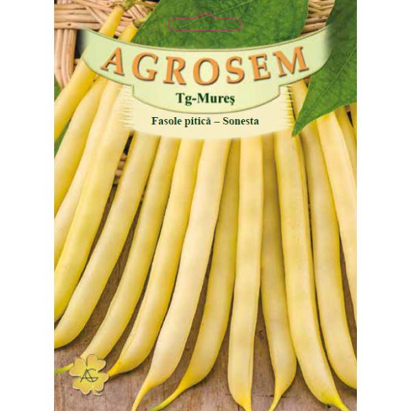 Seminte de fasole pitica galbena fideluta Sonesta, 50 grame, Agrosem