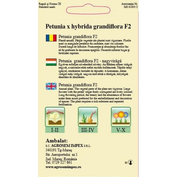 Seminte de petunia grandiflora F2, 0,01 grame