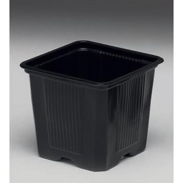 Ghivece patrate negre pentru rasaduri, latime 8 cm, lungime 8 cm, inaltime 9 cm