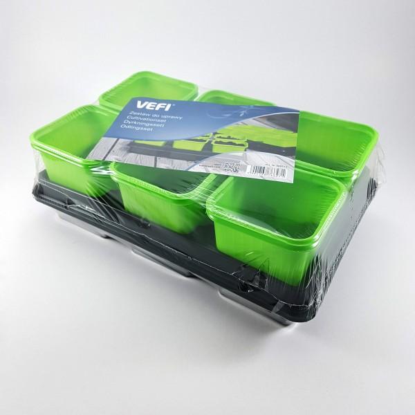 Ghivece patrate 8 cm si 2 tavi - verde
