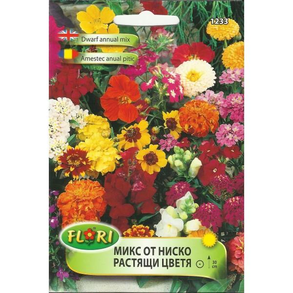 Seminte de flori anuale pitice mix, Florian