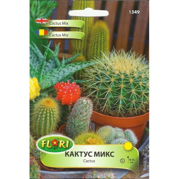 Seminte de cactus mix, Florian