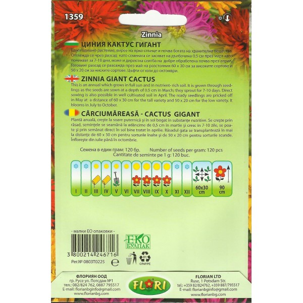 Seminte de carciumareasa cactus gigant mix, Florian