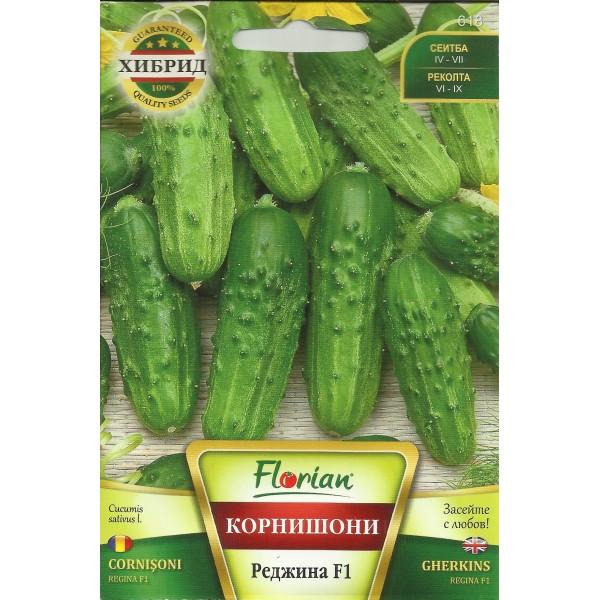Seminte de castraveti cornichon Regina F1, Florian, 100 grame