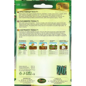 Seminte de castraveti semilungi Tesa F1, 1,5 grame, Florian