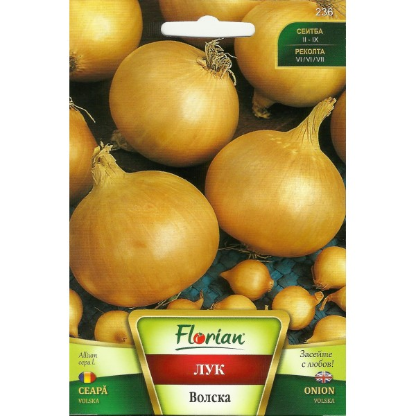 Seminte de ceapa Volska, Florian, 2 grame