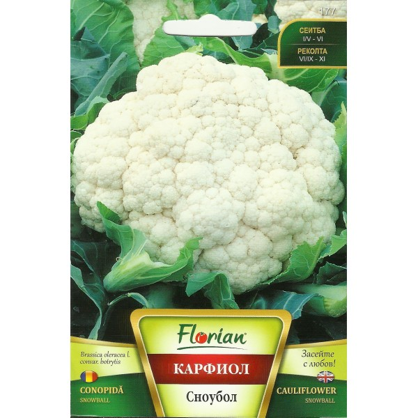 Seminte de conopida Snowball, Florian, 50 grame