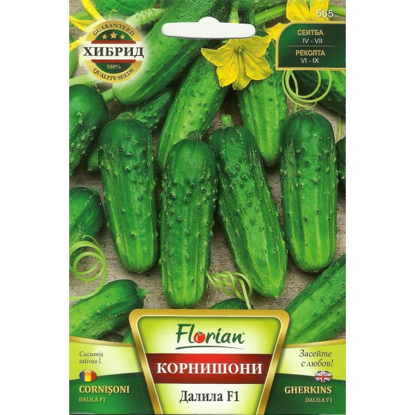 Seminte de castraveti cornichon Dalila F1, Florian, 1,5 grame