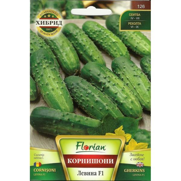 Seminte de castraveti cornichon Levina F1, Florian, 5 grame
