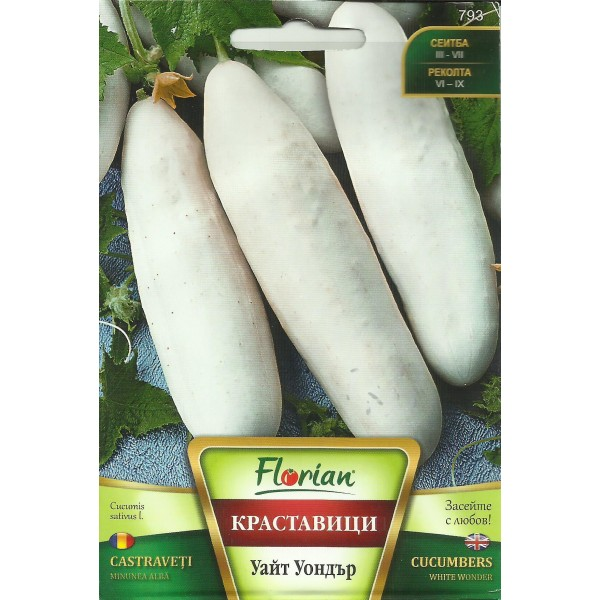 Seminte de castravete alb White Wonder, Florian, 1 gram