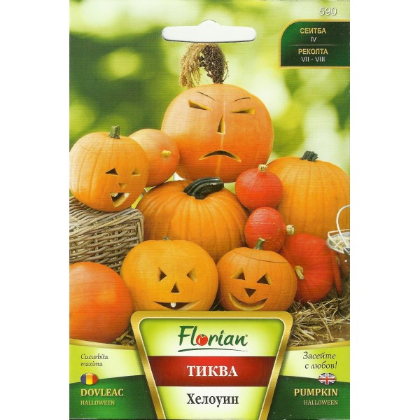 Seminte de dovleac Halloween, Florian, 100 grame