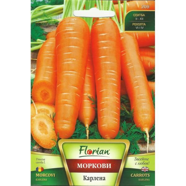 Seminte de morcovi Karlena, Florian, 5 grame