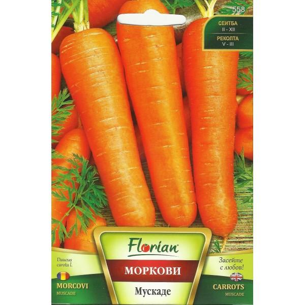 Seminte de morcov muscade, Florian, 10 grame
