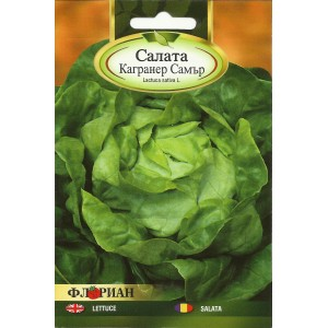 Seminte de salata Cagraner Summer, 3 grame, Florian