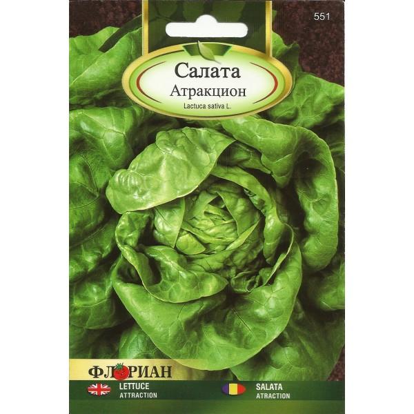 Seminte de salata Atraction, Florian, 3 grame