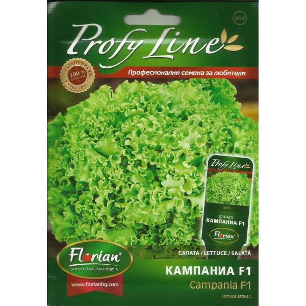 Seminte de salata Campania F1, 50 seminte