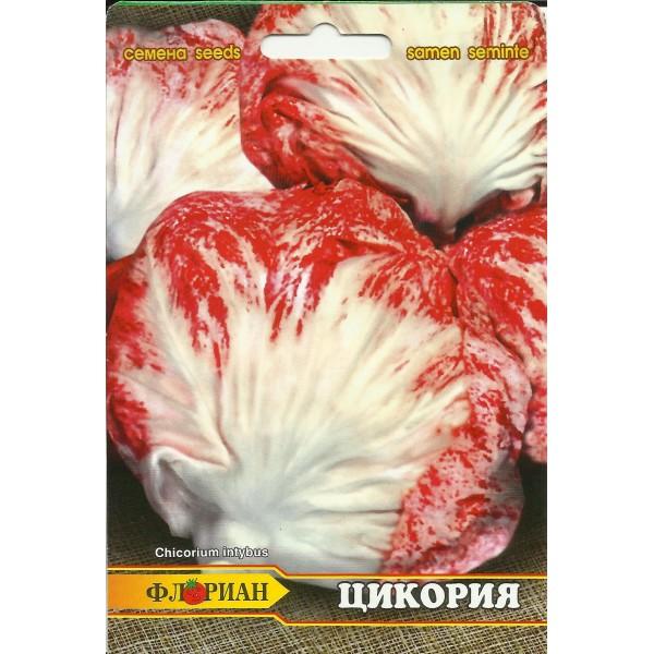 Seminte de cicoare tip radacina, Florian, 3 grame
