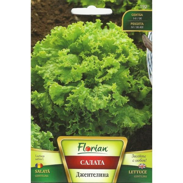 Seminte de salata Gentelina, Florian, 3 grame