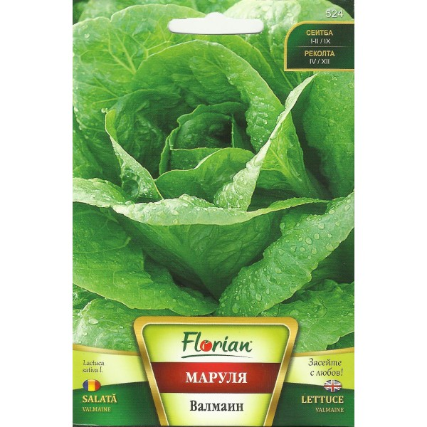 Seminte de salata Valmaine, Florian, 3 grame