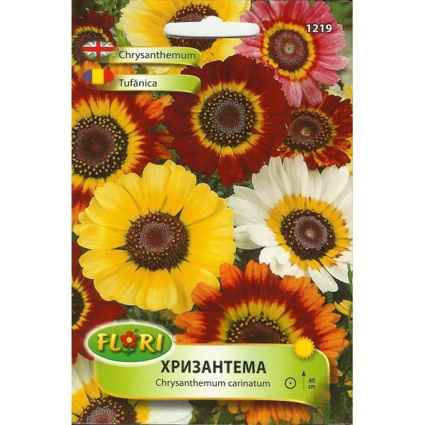 Seminte de crizantema mix, Florian
