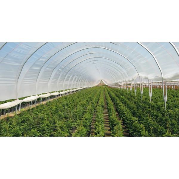 Folie de acoperire profesionala pentru solar, latime 12 metri, 120 microni, 1 kg