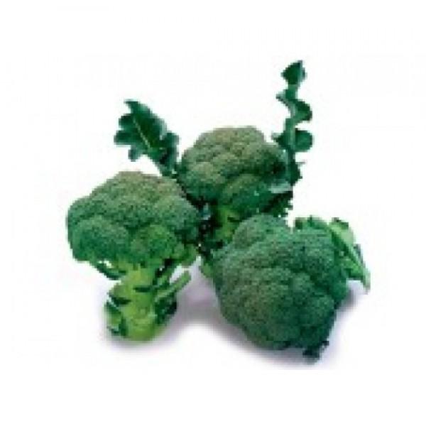 Seminte de broccoli Marathon F1, 1000 seminte, Sakata