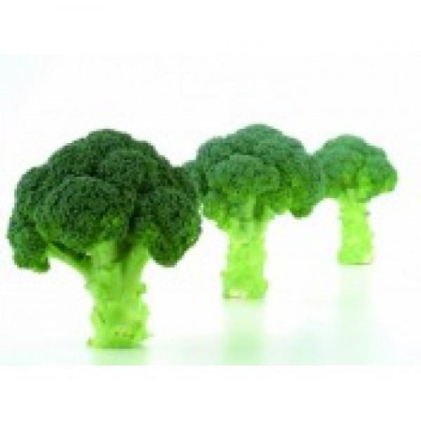 Seminte de broccoli Naxos F1, 1000 seminte, Sakata
