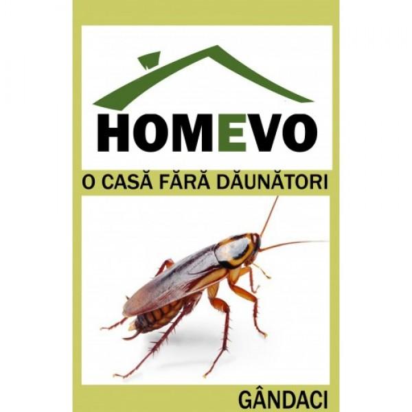 Insecticid gel pentru combaterea gandacilor, homevo, 5 grame