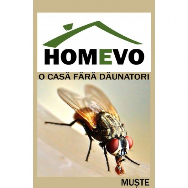 Insecticid granulat impotriva mustelor, homevo, 10 grame
