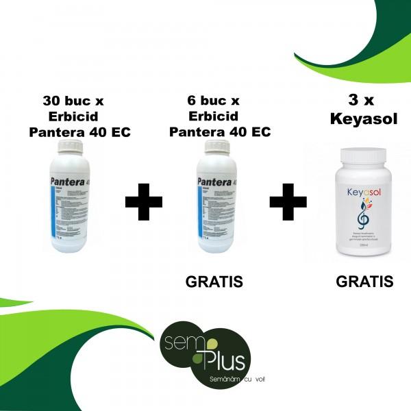 Pachet promotional Erbicid Pantera 40 EC, 1 litru, 30 bucati + 6 bucati GRATIS