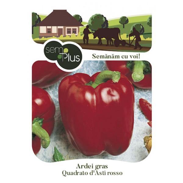 Seminte de ardei gras Quadrato d Asti Rosso, 0,8 grame, SemPlus