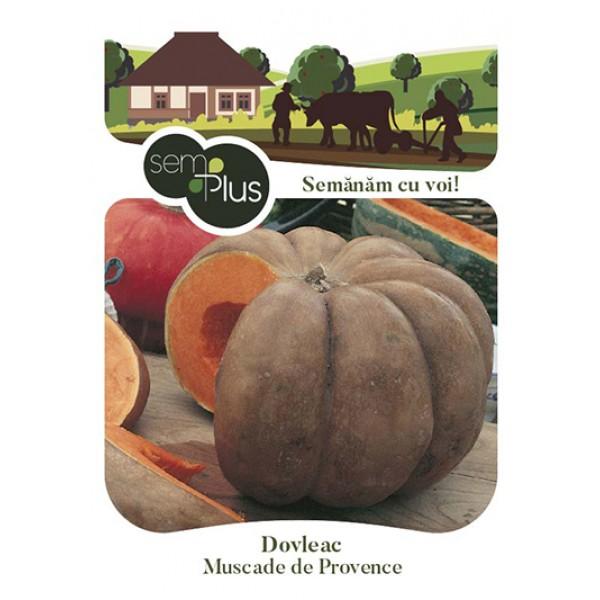 Seminte de dovleac Muscade de Provence, 1,5 grame, SemPlus