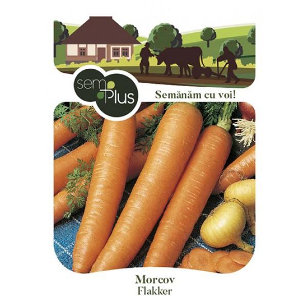 Seminte de morcovi Flakker, 5 grame, SemPlus