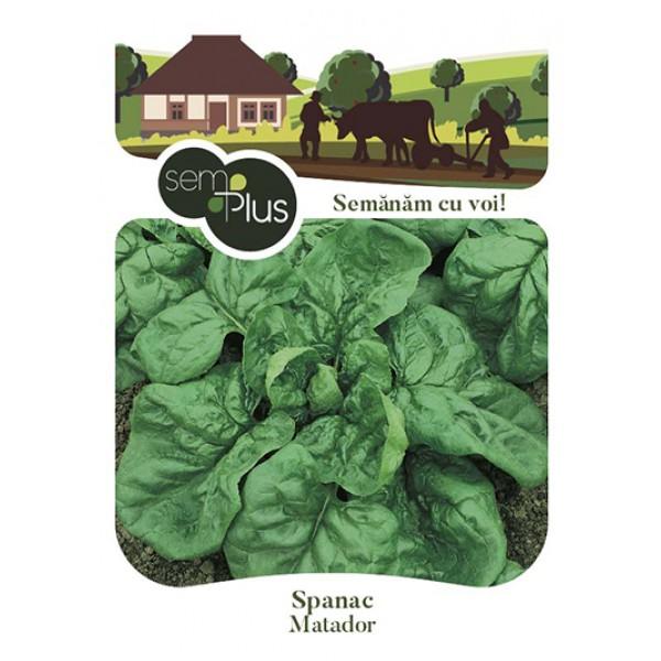 Seminte de spanac Matador, 9 grame, SemPlus
