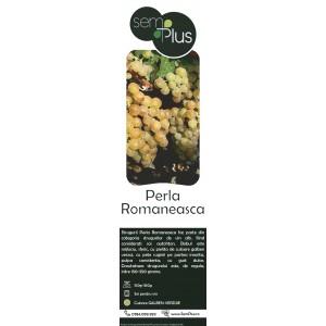 Butasi de vita de vie de vin Perla Romaneasca, 1 bucata, SemPlus