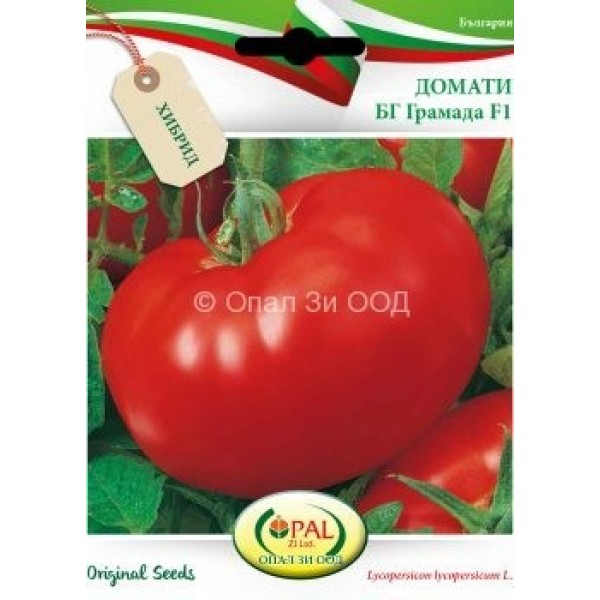 Seminte de tomate Gramada F1, 5 grame, Opal
